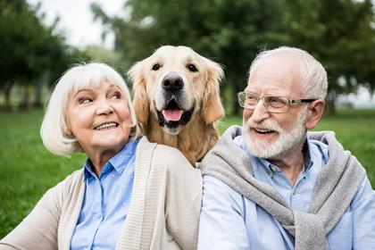 smiling senior couple looking at adorable dog while resting in park